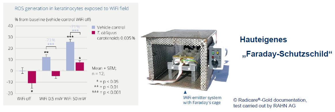 Faraday-Schutzschild